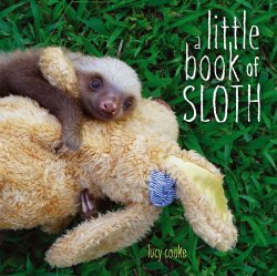 little_book_of_sloth_large