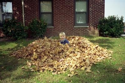 1993_09-9-leaves