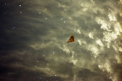1998_07 6 Kites