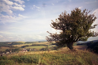 1999_09_25 5 Ruine Randeck