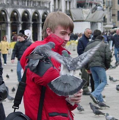 2002_04_10 10 Pigeons