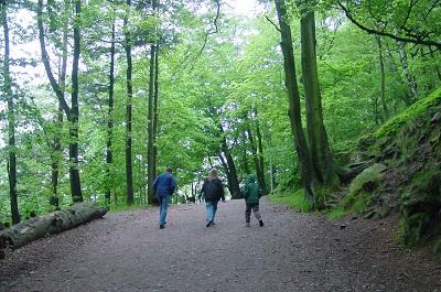 2004_05_09 3 Trifels
